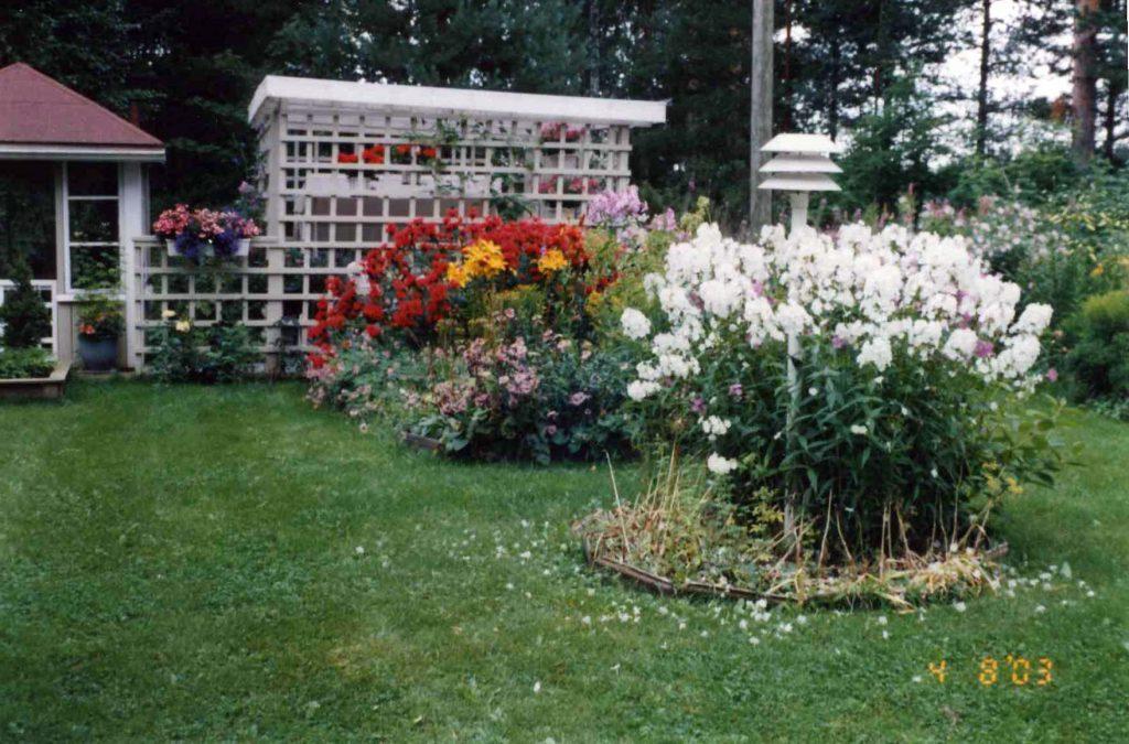 Savon puutarha